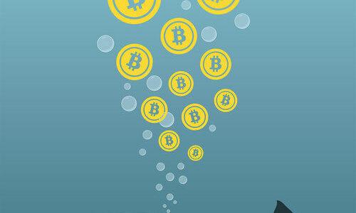 Balinalar Yarım Milyar Dolarlık Bitcoin'i Harekete Geçirdi