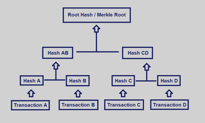What is Merkle Tree?