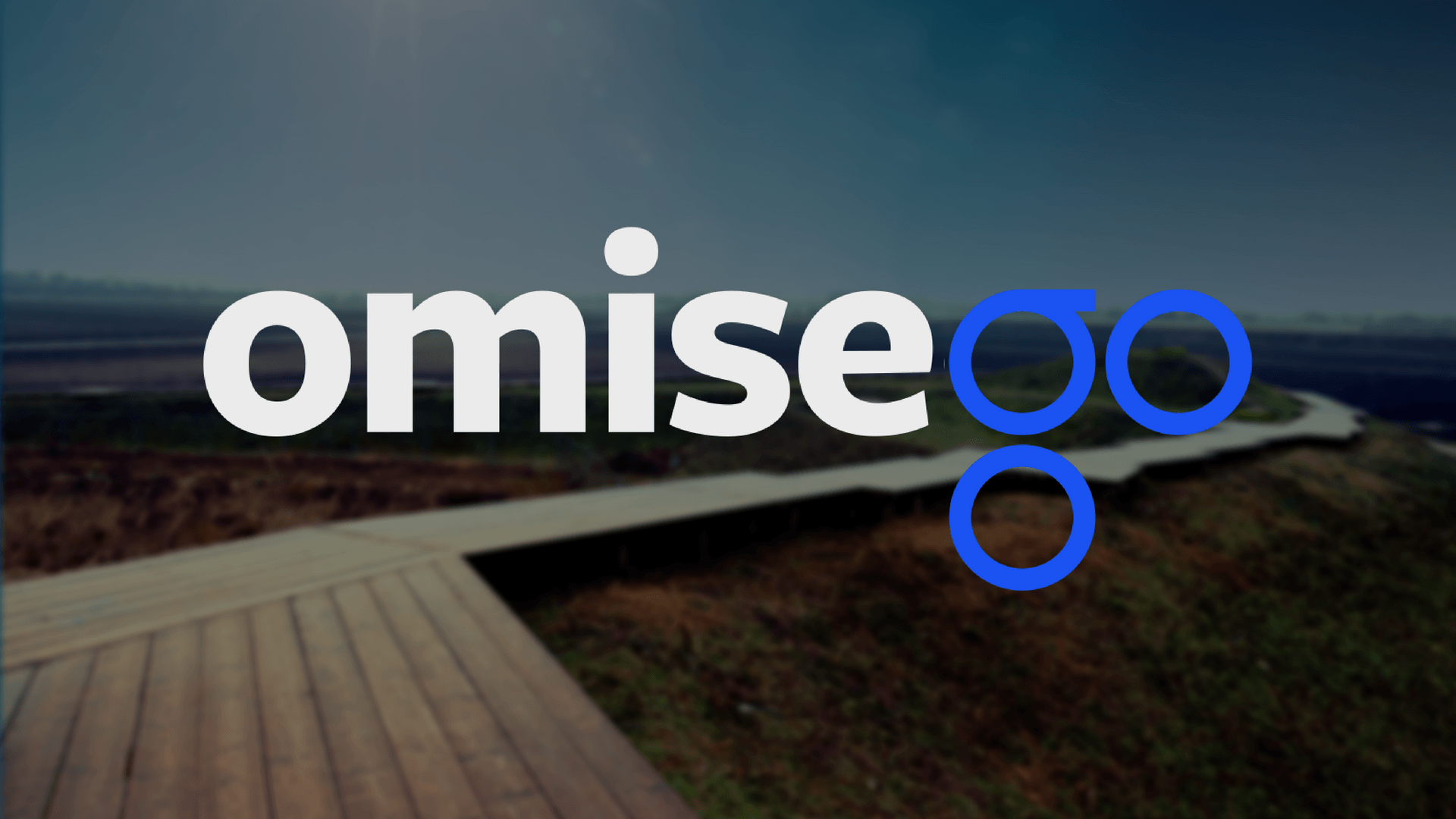 What is OmiseGo Coin (OMG)?