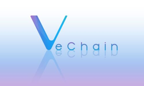 What is VeChain?