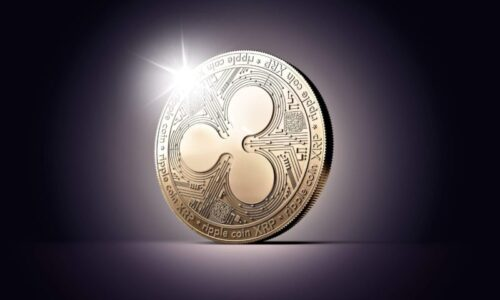 XRP Might Go Public!