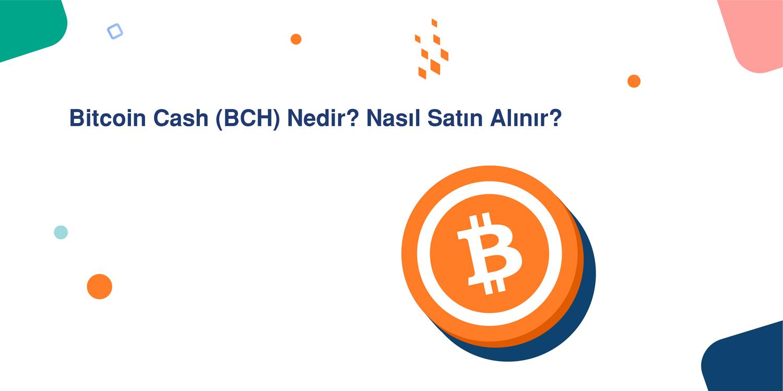 Bitcoin Cash (BCH) Nedir? Nasıl Satın Alınır?